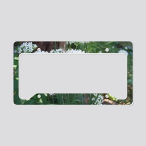 Fall Chive Blossoms License Plate Holder