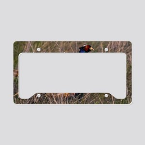 (6) Pheasant  407 License Plate Holder
