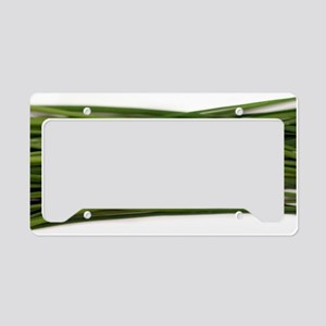 Chives License Plate Holder