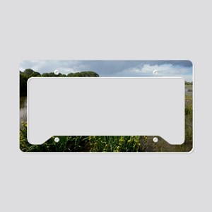 Yellow iris (Iris pseudacorus License Plate Holder