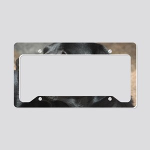 """Turbo  The  Great"" License Plate Holder"