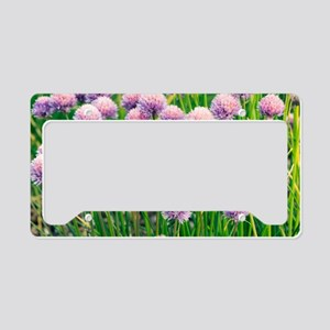 Chives (Allium schoenoprasum) License Plate Holder