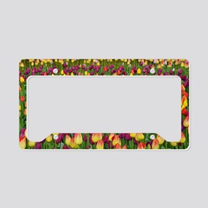 Colorful spring tulips garden License Plate Holder