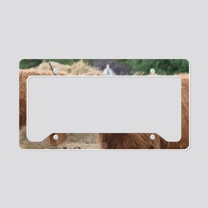 Cute Highland Cow License Plate Holder
