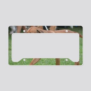 Pet Rhodesian Ridgeback License Plate Holder