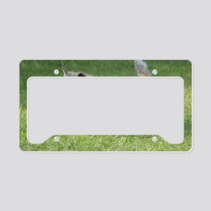 Sweet Cairn Terrier License Plate Holder