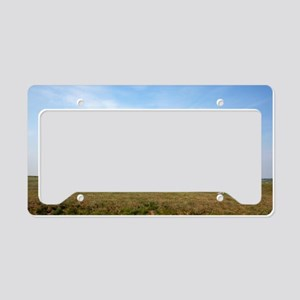 stonehenge wiltshire License Plate Holder