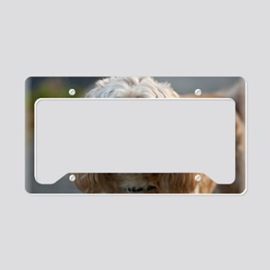 DeeJay License Plate Holder