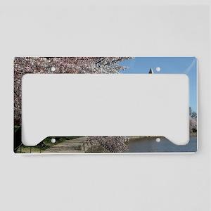 Peal bloom cherry blossom fra License Plate Holder