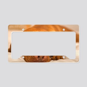 dreamy dog License Plate Holder