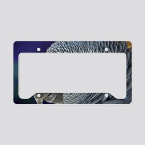 African Gray License Plate Holder