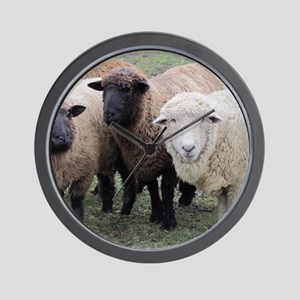 3 Sheep at Wachusett Wall Clock