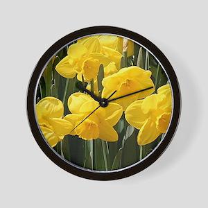 Daffodil flowers in bloom in garden Wall Clock