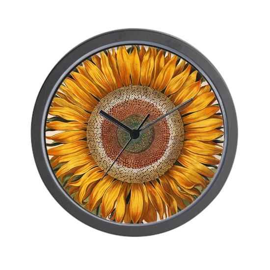 Basilius Besler Sunflower Wall Clock