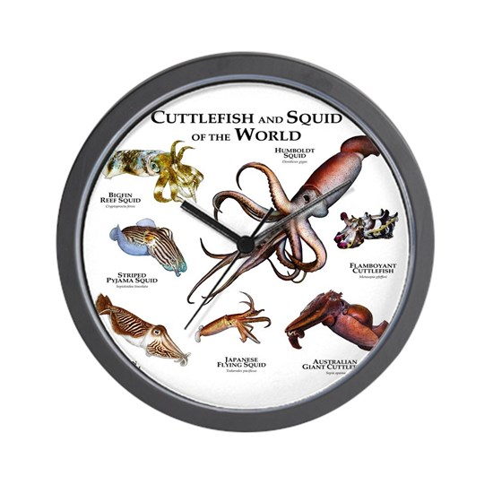 Cuttlefish Amp Squid Of The World Wall Clock By Wildlife