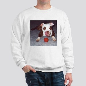 Just Fetch It Sweatshirt