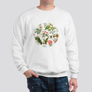Botanical Illustrations - Larousse Plan Sweatshirt