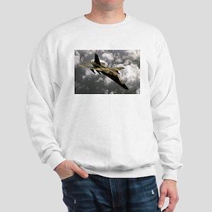 A-111 Aardvark Sweatshirt