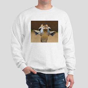 Schmooch! Sweatshirt