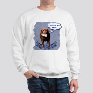Labs-n-Kids Sweatshirt
