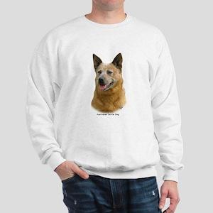 Aust Cattle Dog 9K009D-19 Sweatshirt