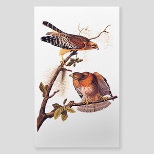 Red Shouldered Hawk Vintage Audubon Art Sticker