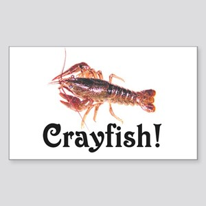 Colorful Crayfish Rectangle Sticker