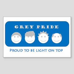 Grey Pride Rectangle Sticker
