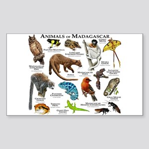 Animals of Madagascar Sticker (Rectangle)