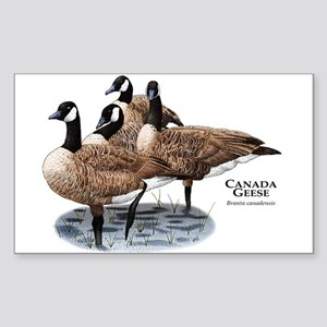 Canada Geese Sticker (Rectangle)