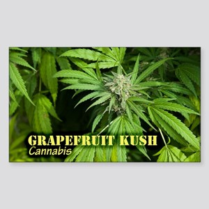 Grapefruit Kush (with name) Sticker (Rectangle)