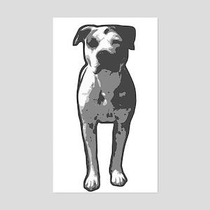 Pit Bull T-Bone Graphic Sticker