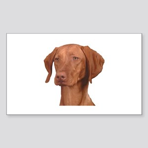 Vizsla Head Shot - Sticker (Rectangle)