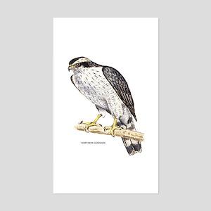 Northern Goshawk Bird Sticker (Rectangle)