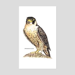 Peregrine Falcon Bird Sticker (Rectangle)