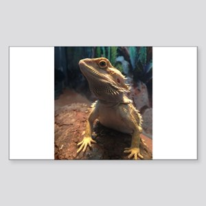Bearded Dragon Sticker (Rectangle)