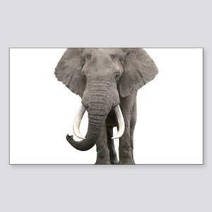 Realistic elephant design Sticker