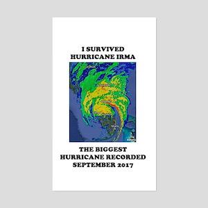 Survived Hurricane Irma Sticker