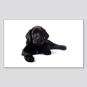 Labrador Retriever Sticker (Rectangle)