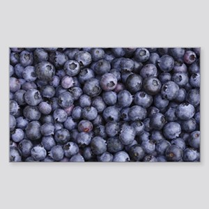 BLUEBERRIES 3 Sticker (Rectangle)