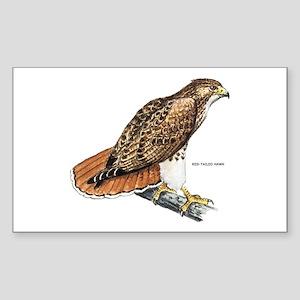 Red-Tailed Hawk Bird Sticker (Rectangle)