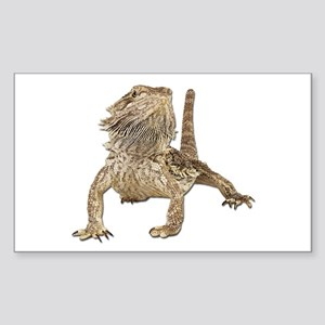 Bearded Dragon Photo Rectangle Sticker