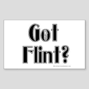 Got Flint? Rectangle Sticker