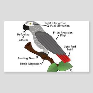 Anatomy of an African Grey Parrot Sticker