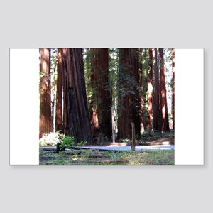 The Redwood Highway Rectangle Sticker