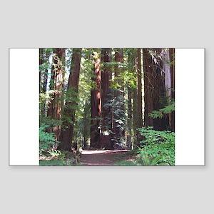 Redwood Trail Rectangle Sticker