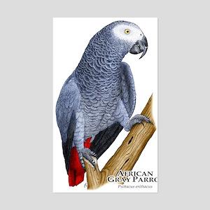 African Gray Parrot Rectangle Sticker