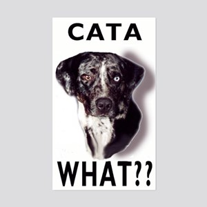 cata WHAT? Rectangle Sticker