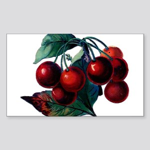 Vintage Cherry Big Red Juicy Cherries Fruit Sticke