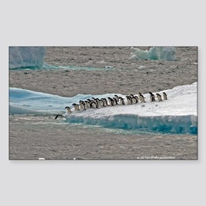 Penguins Sticker (Rectangle)